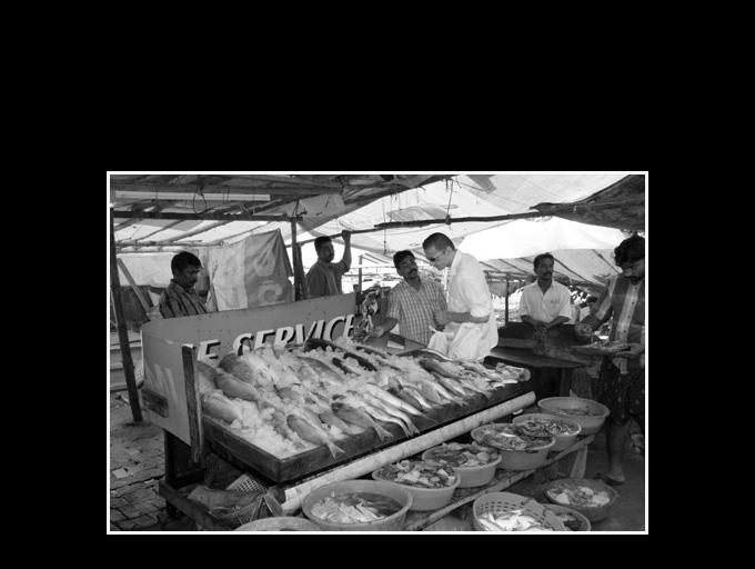 Cochin Inde 166