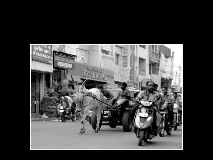 Madras Inde 161