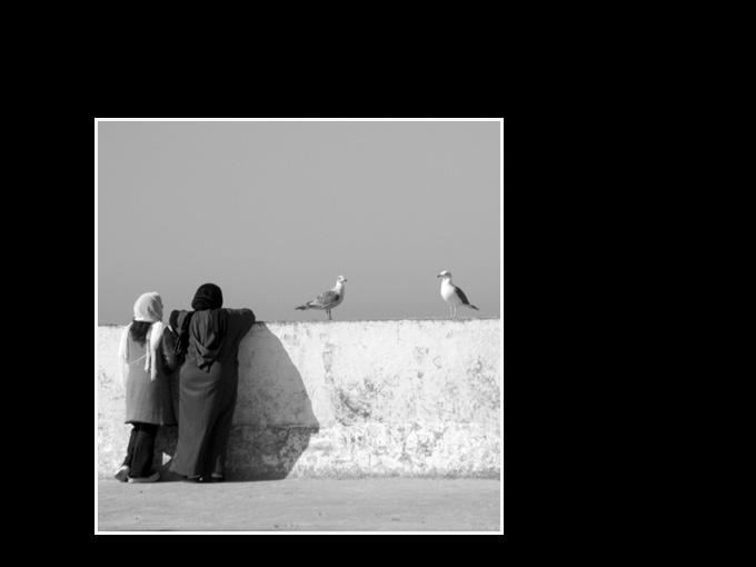 Maroc 115